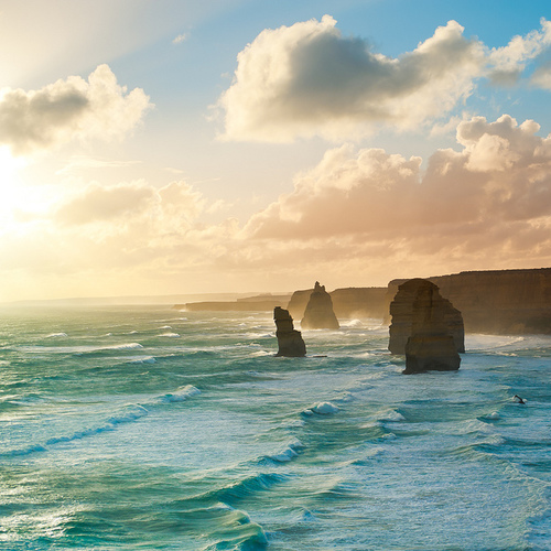 newzealand1