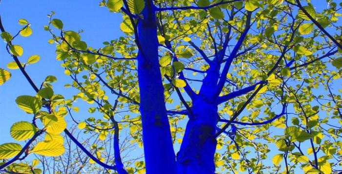 Blue-Trees-Volunteers-Houston-365-Things-Houston-Texas-Art-700x357